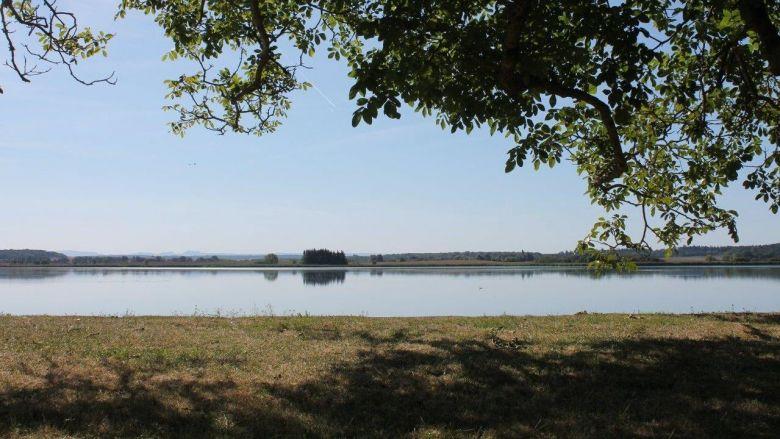 Le domaine de l'Indre et son étang abritent une faune et une flore très riches. / © Office du tourisme du pays de Saulnois.