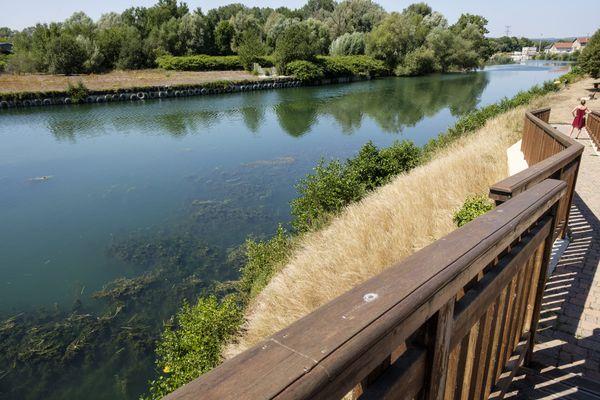 Du côté de Stenay, la vallée de la Meuse est classée Natura 2000.